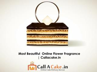 Most Beautiful  Online Flower Fragrance | Callacake.in