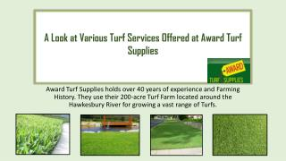 A Look at Various Turf Services Offered at Award Turf Supplies