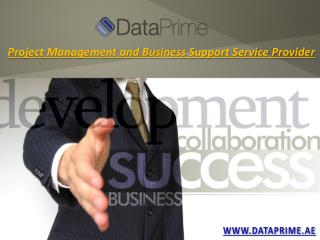 Business Solutions Dubai - Data Prime