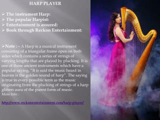 India's No 1 - International Flute Mermaid In Delhi NCR By Reckon Entertainment Pvt Ltd