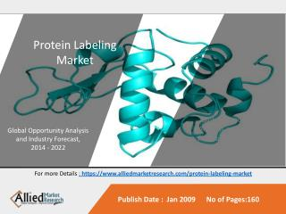 Protein Labeling Market is Expected to Reach $5,350 M.