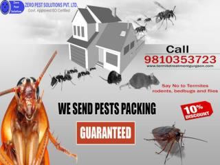 Avail 10% special discount on termite control services in Gurgaon.