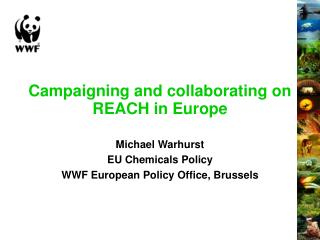 Campaigning and collaborating on REACH in Europe