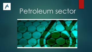 Report on Petroleum Sector