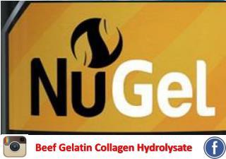 Beef Gelatin Collagen Hydrolysate
