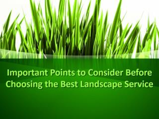 Important Points to Consider Before Choosing the Best Landscape Service