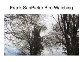 Frank SanPietro Bird Watching