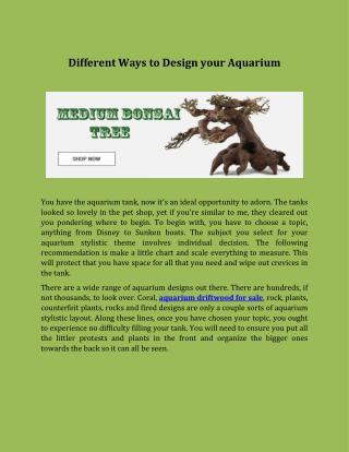 Different Ways to Design your Aquarium