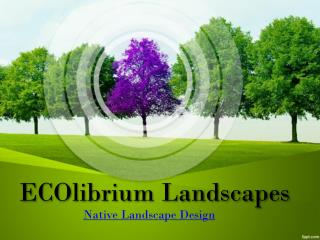 Sustainable Landscapes | Landscaping Southern Highlands | ECOlibrium Landscapes
