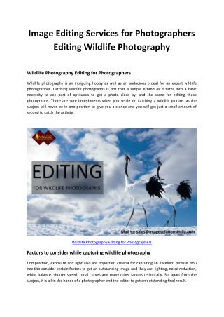 Image Editing Services for Photographers - Editing Wildlife Photography