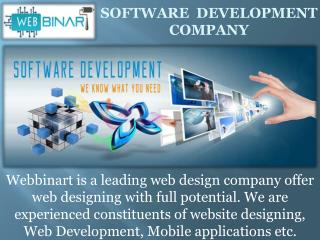 Best IT software Development Company in Switzerland.