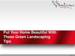 Put Your Home Beautiful With These Green Landscaping Tips