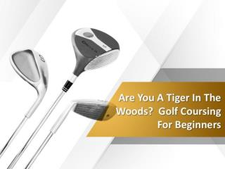 Are you a tiger in the woods   golf coursing for beginners