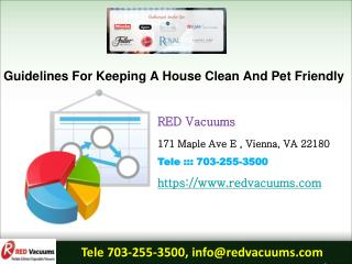 Guidelines For Keeping A House Clean And Pet Friendly