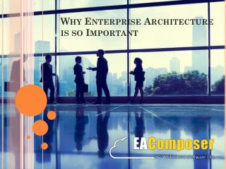 What is the importance of Enterprise Architecture?
