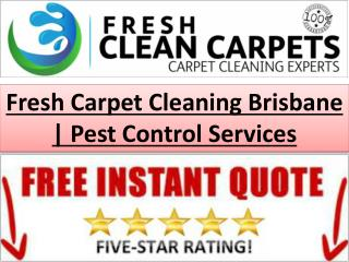 Fresh Carpet Cleaning Brisbane | Pest Control Services
