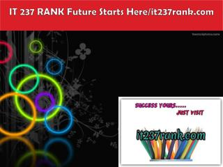 IT 237 RANK Future Starts Here/it237rank.com