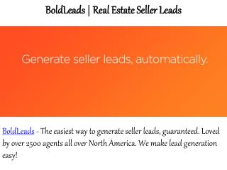 Bold Leads Reviews - How to Generate Real Estate Seller Leads