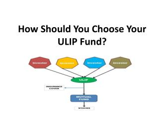 How Should You Choose Your ULIP Fund?