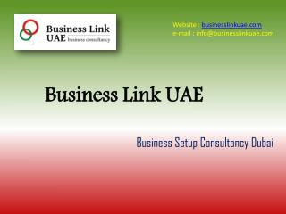 Best Business Setup Services