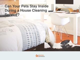 Are Pets Not Allowed to Stay During the Home Cleaning Session?