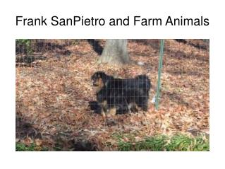 Frank SanPietro and Farm Animals