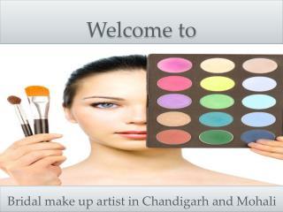 Make up artist in mohali