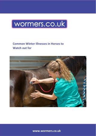 Common Winter Illnesses in Horses to Watch out for