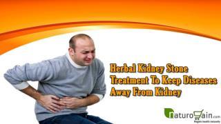 Herbal Kidney Stone Treatment To Keep Diseases Away From Kidney