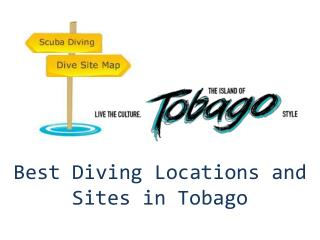 Best Diving Locations and Dive Sites in Tobago