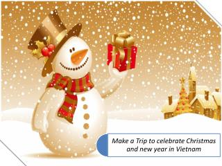 Make a Trip to celebrate Christmas and new year in Vietnam.