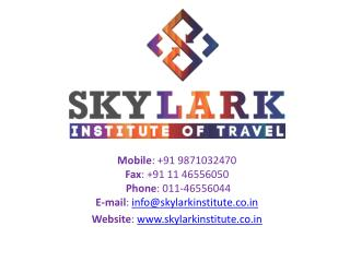 Skylark Institute of Travel