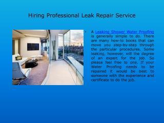 Hiring Professional Leak Repair Service