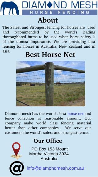 Best Horse Net