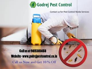 Contact us for Pest Control Noida Services - 9811381458