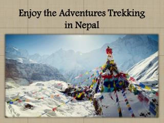 Enjoy the Adventures Trekking in Nepal