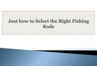 Just how to Select the Right Fishing Rods