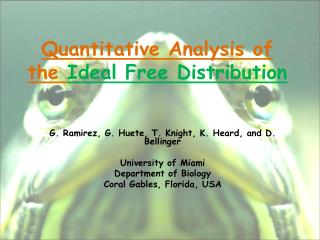 Quantitative Analysis of the Ideal Free Distribution