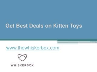 Get Best Deals on Kitten Toys - www.thewhiskerbox.com