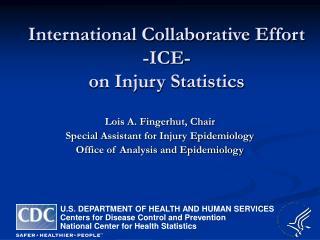 International Collaborative Effort  -ICE-  on Injury Statistics