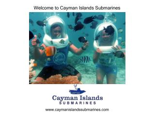Best Options to Scuba Diving in the Cayman Islands.