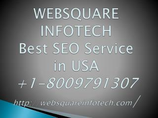 call on  1-8009791307 Best SEO Services in USA