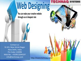 Web Design Company in Delhi & Noida