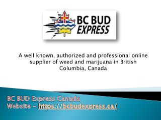 Canada's Fastest and Best BC Bud Online