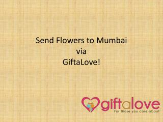 Send Flowers to Mumbai | GiftaLove | 8882001155