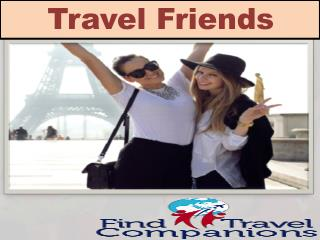 Provide Best Travel Friends For Your Trip
