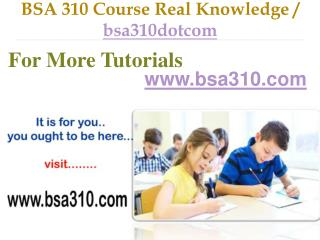 BSA 310 Course Success Begins / bsa310dotcom