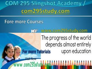 COM 295 Slingshot Academy / com295study.com