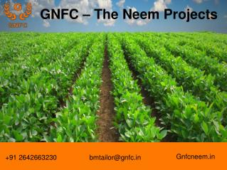 Neem oil Use in Agriculture and Herbal Medicine