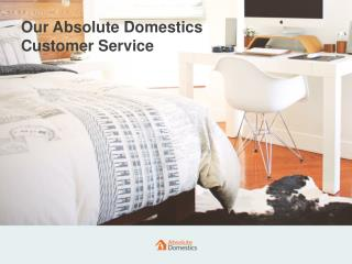 How Does the Absolute Domestics' Customer Service Team Work Daily?